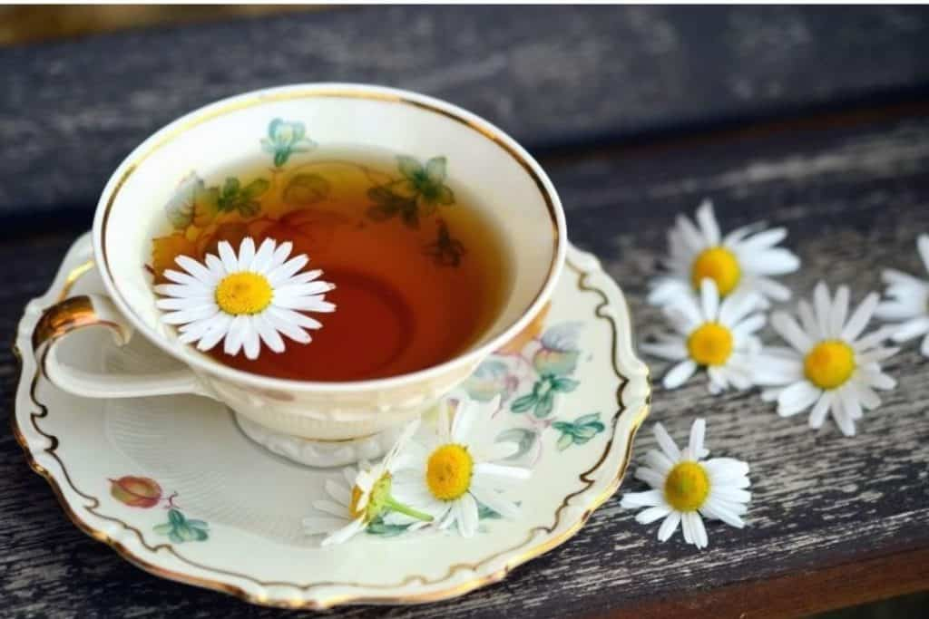 German Chamomile about