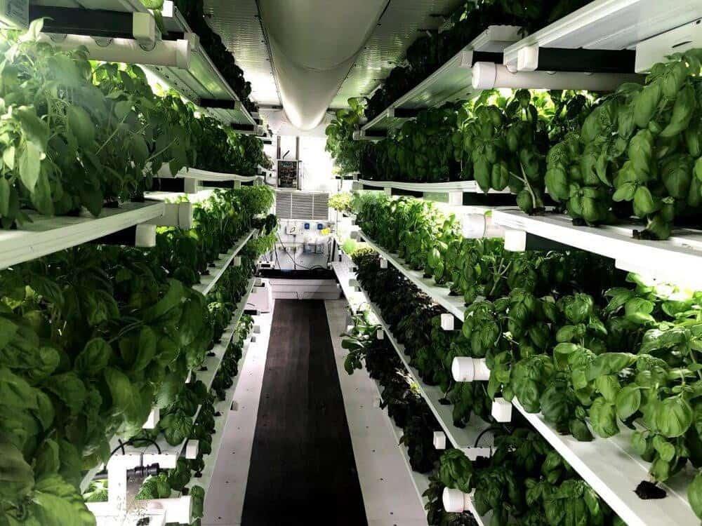 indoor farming 2