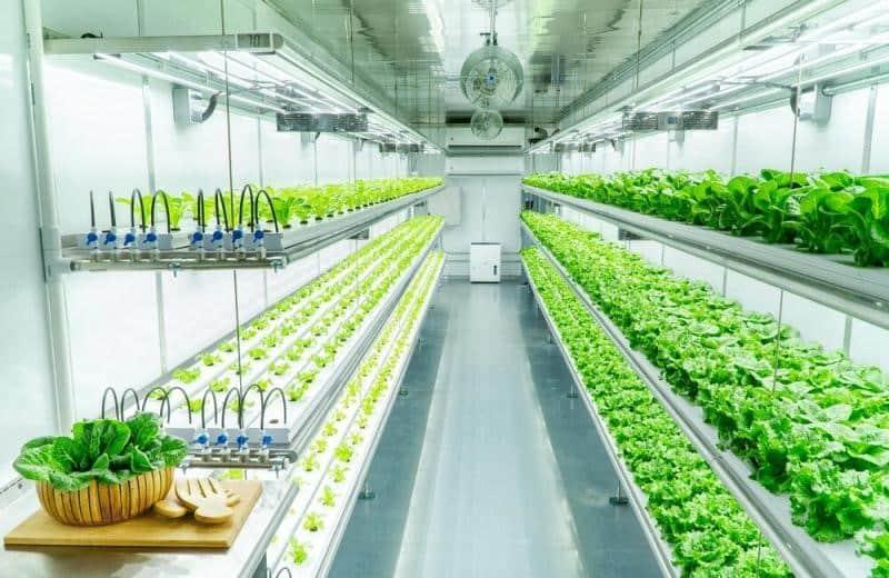 indoor farming system