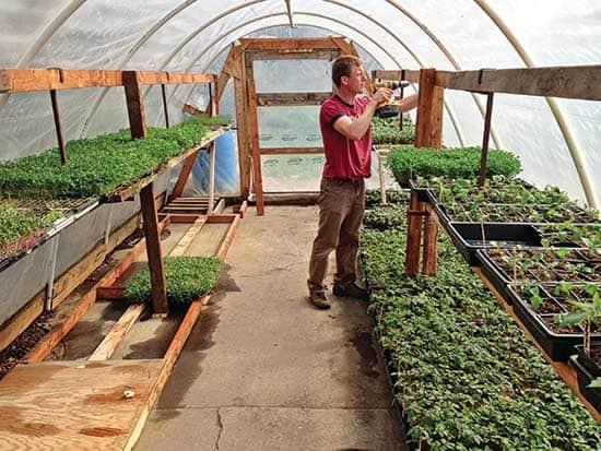 start indoor farming
